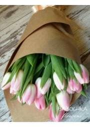 букет из нежных тюльпанов
